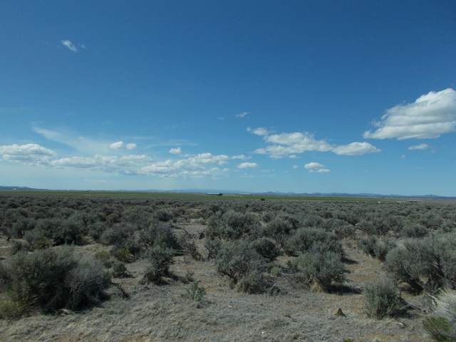 Lot 803 Old Lake Road, Christmas Valley, OR 97641 (MLS #220122480) :: Vianet Realty