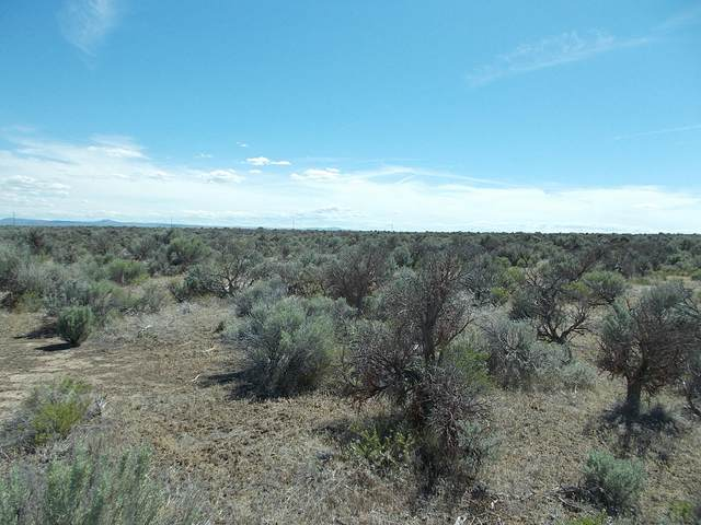 Lot 905 Lost Forest Road, Christmas Valley, OR 97641 (MLS #220122554) :: Vianet Realty