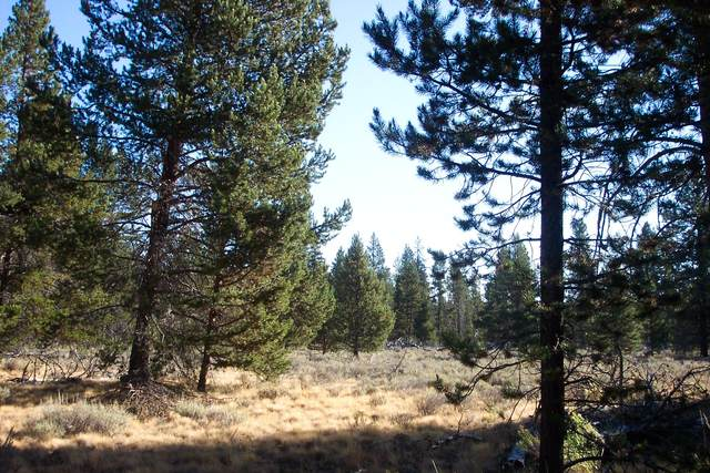 6 Valley Oak Lane, Chiloquin, OR 97624 (MLS #220123435) :: Schaake Capital Group