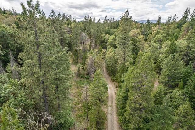 West Fork Sardine Crk / E Evan Road, Rogue River, OR 97537 (MLS #220123636) :: Bend Homes Now