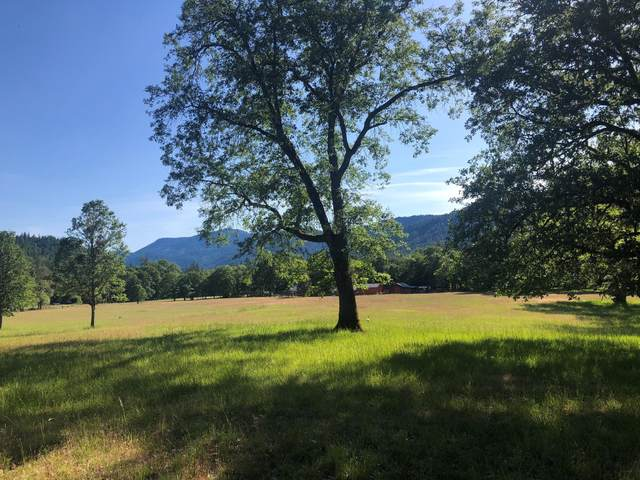5477 Pleasant Creek Road, Rogue River, OR 97537 (MLS #220123829) :: Bend Relo at Fred Real Estate Group