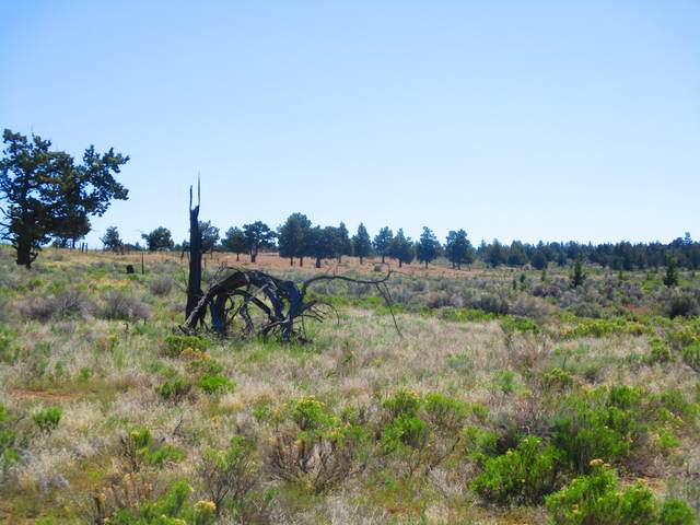 TL1300 SE Cascade Way, Prineville, OR 97754 (MLS #220124121) :: Bend Homes Now