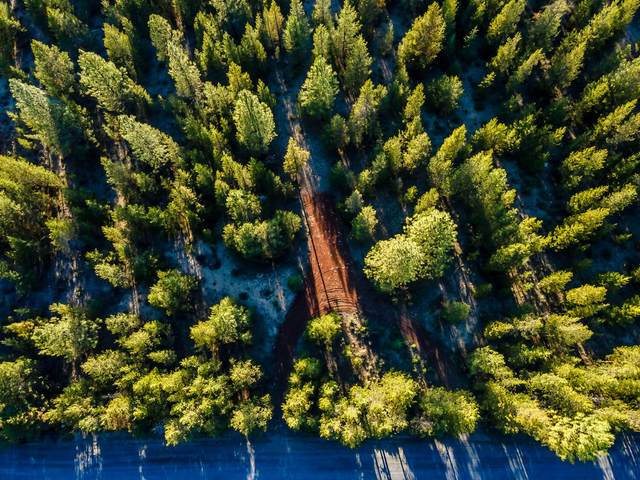 1200 Gracies Road, La Pine, OR 97739 (MLS #220124247) :: Chris Scott, Central Oregon Valley Brokers