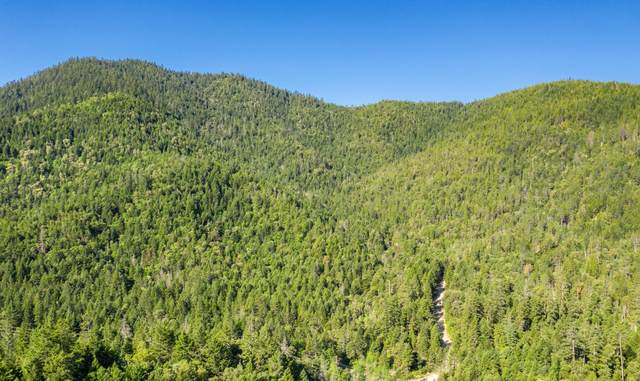 0 Winona Road, Grants Pass, OR 97526 (MLS #220124282) :: The Ladd Group
