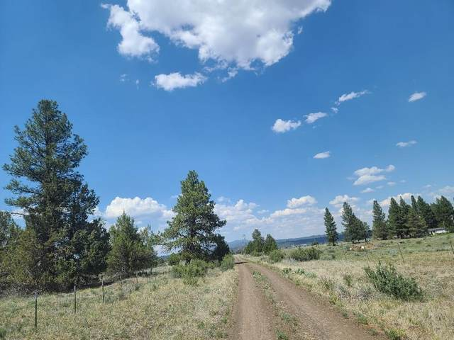 Parcel 1 Off Forbes Road Lot 1300, Sprague River, OR 97639 (MLS #220124410) :: Schaake Capital Group