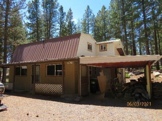 12174 Night Owl Drive, Bonanza, OR 97623 (MLS #220124484) :: Bend Relo at Fred Real Estate Group