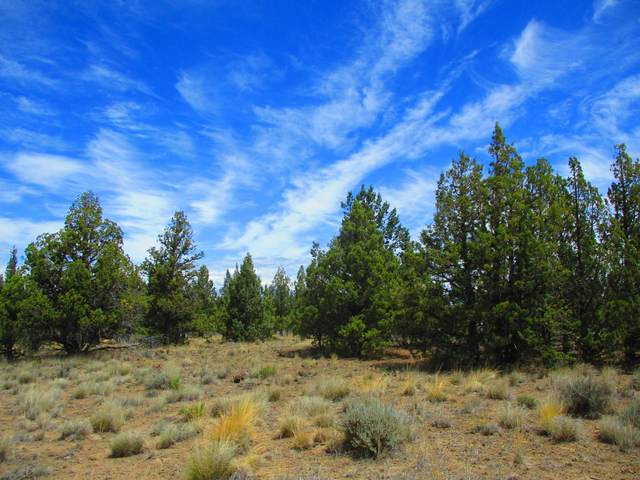 TL2200 SE Cayuse Road, Prineville, OR 97754 (MLS #220124567) :: The Ladd Group