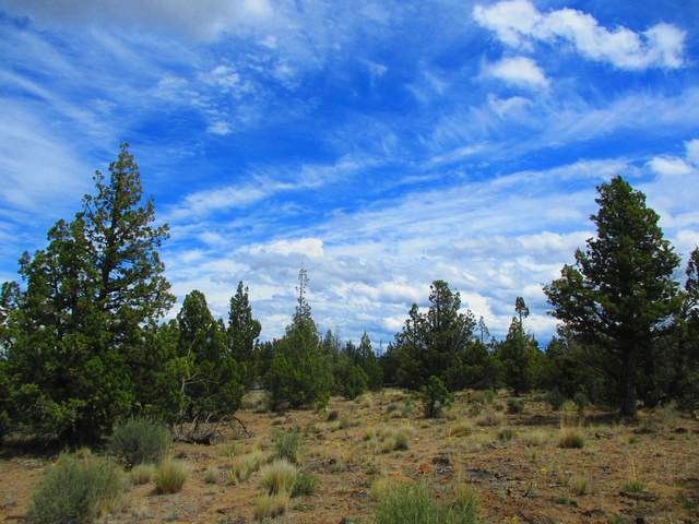 TL7100 SE Cayuse Road, Prineville, OR 97754 (MLS #220124660) :: The Ladd Group