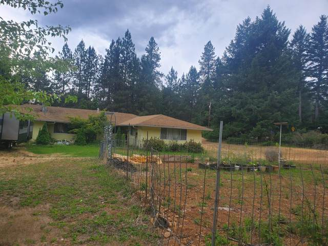513 Queens Branch Road, Rogue River, OR 97537 (MLS #220124868) :: FORD REAL ESTATE