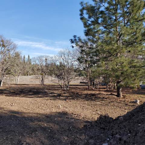 Lot 1 Hannah's Place, Shady Cove, OR 97539 (MLS #220124890) :: Keller Williams Realty Central Oregon