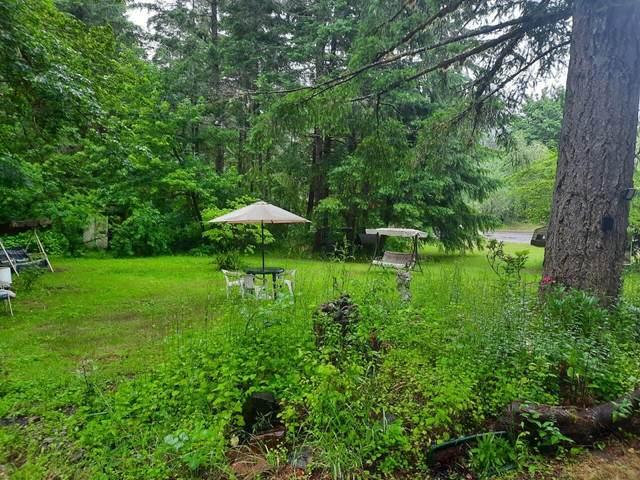39818 Brice Creek Road, Cottage Grove, OR 97424 (MLS #220124926) :: Berkshire Hathaway HomeServices Northwest Real Estate
