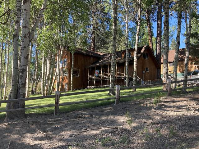 41181 Pine Ridge Loop, Chiloquin, OR 97624 (MLS #220125019) :: Berkshire Hathaway HomeServices Northwest Real Estate