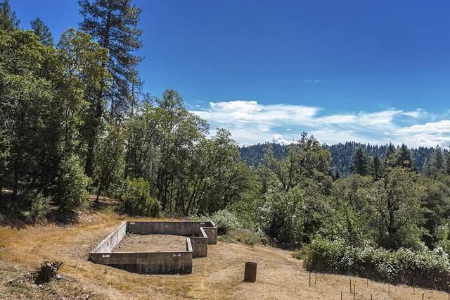 354 Shan Creek Road, Grants Pass, OR 97527 (MLS #220125213) :: Team Birtola | High Desert Realty