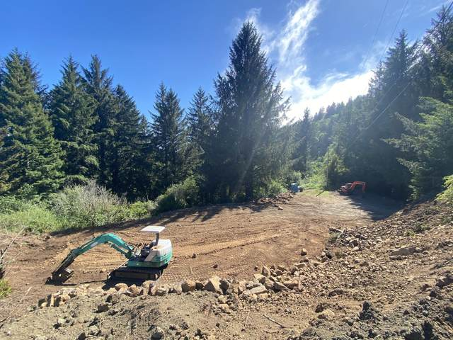 20352 Whaleshead Road, Brookings, OR 97415 (MLS #220125258) :: FORD REAL ESTATE