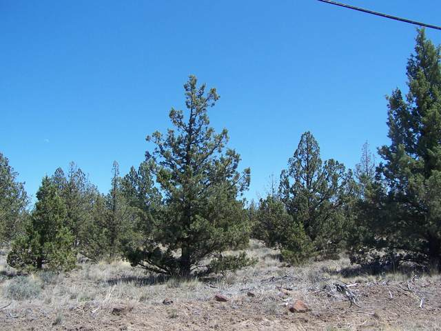 TL600 Cayuse Street, Prineville, OR 97754 (MLS #220125282) :: The Riley Group