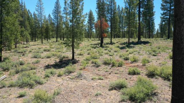 54809 Mountain View Road, Bend, OR 97707 (MLS #220125288) :: Berkshire Hathaway HomeServices Northwest Real Estate