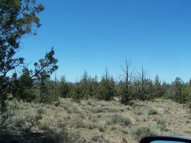 TL5200 Cheyenne Road, Prineville, OR 97754 (MLS #220125291) :: Team Birtola | High Desert Realty