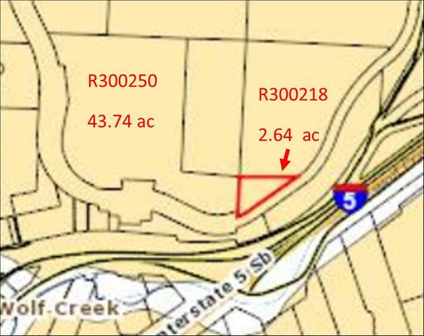 TL500 Railroad Avenue, Wolf Creek, OR 97497 (MLS #220125324) :: Vianet Realty
