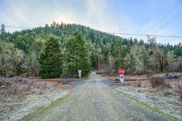 2575 Lower Wolf Creek Road, Wolf Creek, OR 97497 (MLS #220125514) :: Vianet Realty