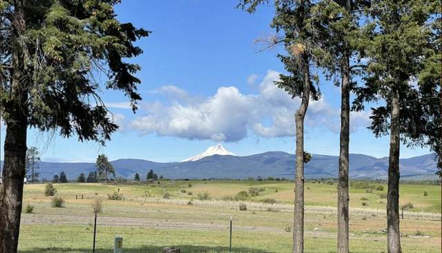 80650 Wamic Market Road, Tygh Valley, OR 97063 (MLS #220125579) :: Arends Realty Group