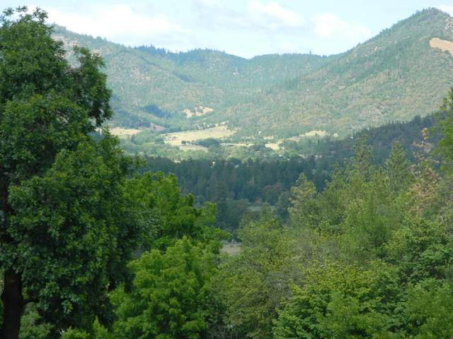 12320 Water Gap Road, Williams, OR 97544 (MLS #220125623) :: Arends Realty Group