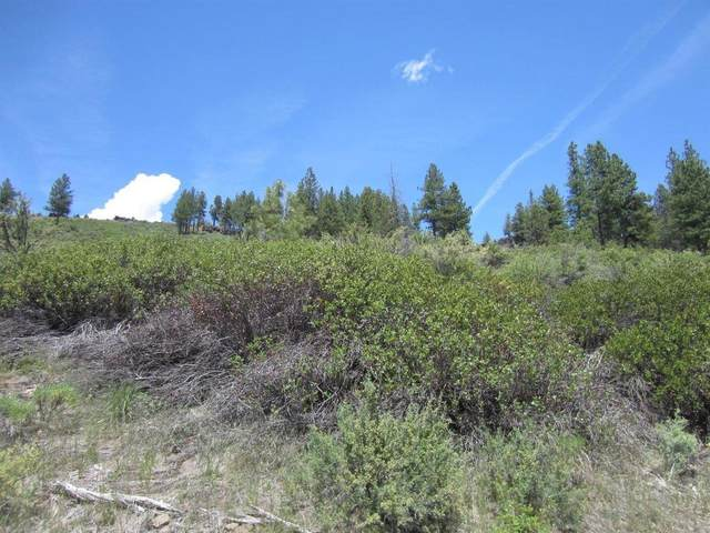 Lot 78 Sprague River Drive, Chiloquin, OR 97624 (MLS #220126573) :: Coldwell Banker Bain
