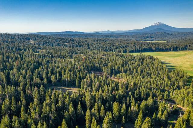 TL 3200-1600 Dead Indian Memorial Road, Ashland, OR 97520 (MLS #220126645) :: Bend Relo at Fred Real Estate Group