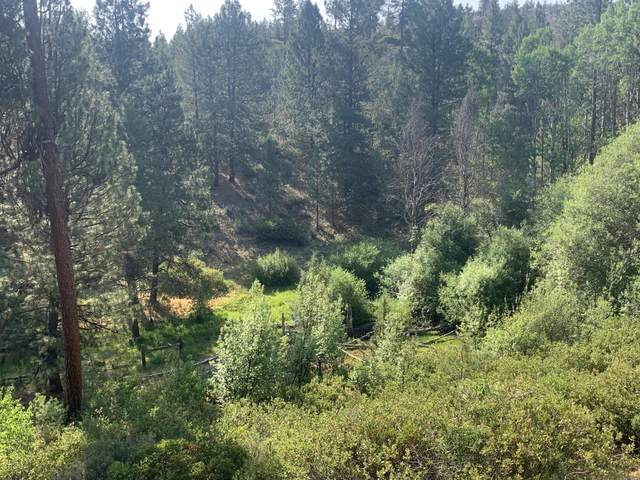 2600 Bliss Road, Sprague River, OR 97639 (MLS #220126654) :: Coldwell Banker Bain