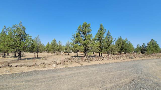 14763 SE Wasco Road, Prineville, OR 97754 (MLS #220127062) :: Arends Realty Group