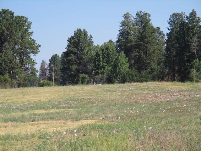 lot 10 Bennie Lane #876208, Chiloquin, OR 97624 (MLS #220127400) :: Arends Realty Group