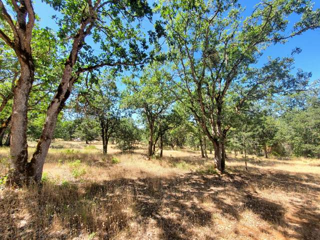 0 Hillview Drive, Grants Pass, OR 97527 (MLS #220127427) :: Schaake Capital Group
