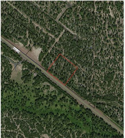 Hwy 58, Crescent, OR 97733 (MLS #220127462) :: Premiere Property Group, LLC