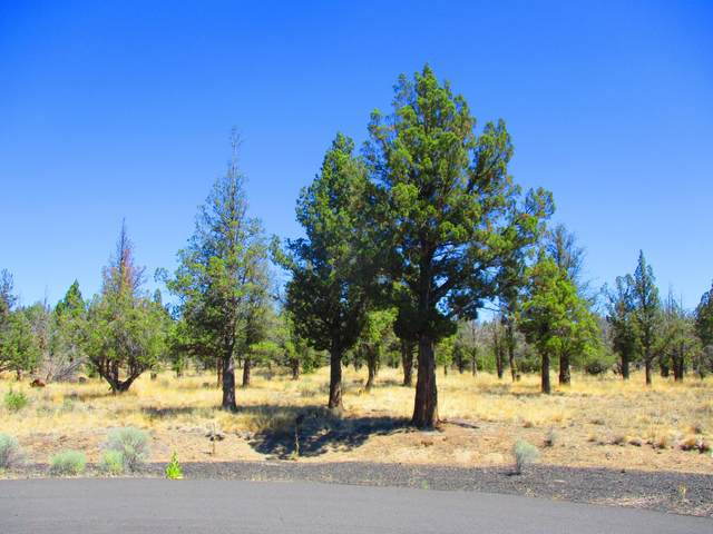 TL404 SE Snowflake Court, Prineville, OR 97754 (MLS #220127475) :: Arends Realty Group