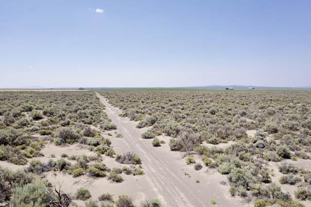Fossil Lake Rd, Christmas Valley, OR 97641 (MLS #220127521) :: Fred Real Estate Group of Central Oregon