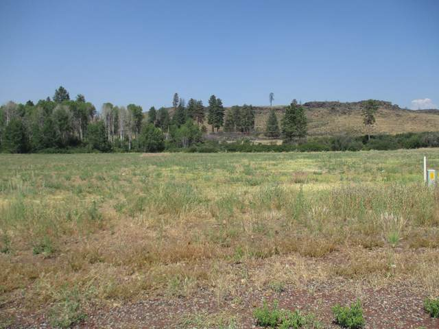 Bennie Lane #876209, Chiloquin, OR 97624 (MLS #220127548) :: Arends Realty Group