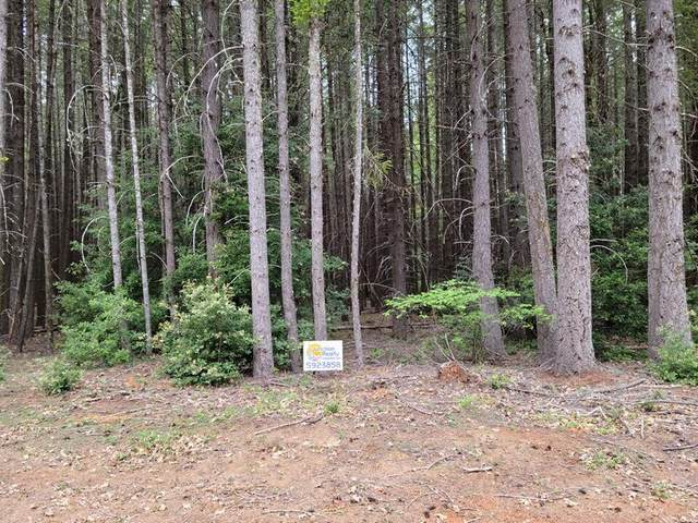 Fernwood Drive, Cave Junction, OR 97523 (MLS #220127596) :: Bend Homes Now