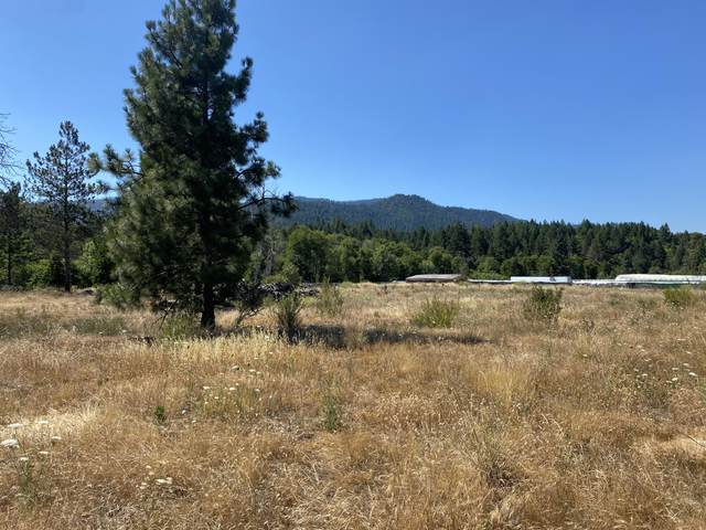 150 Illinois River Road, Selma, OR 97538 (MLS #220127675) :: Bend Homes Now