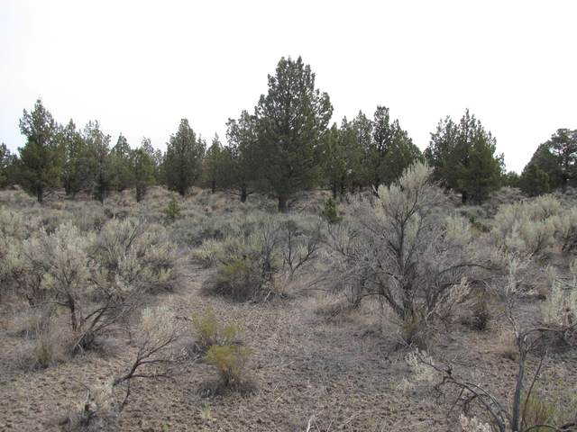 TL300 NW Pinecrest Drive, Prineville, OR 97754 (MLS #220127708) :: Fred Real Estate Group of Central Oregon