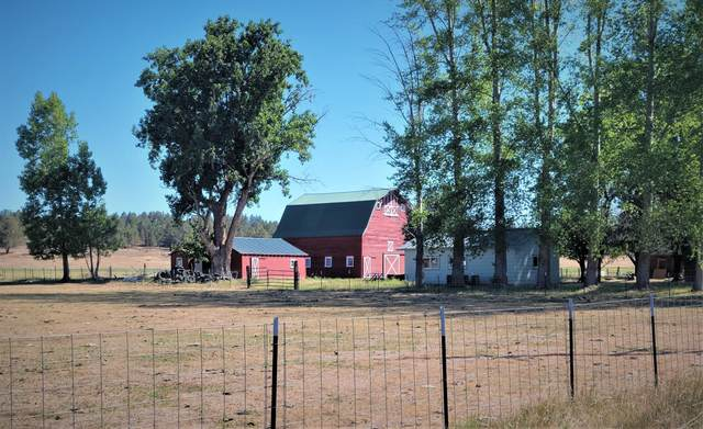 Address Not Published, Klamath Falls, OR 97601 (MLS #220127774) :: Coldwell Banker Sun Country Realty, Inc.