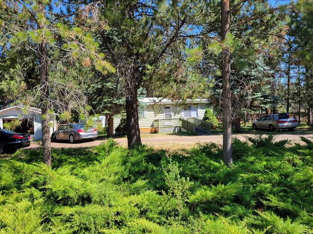 55516 Big River Drive, Bend, OR 97707 (MLS #220127780) :: Arends Realty Group