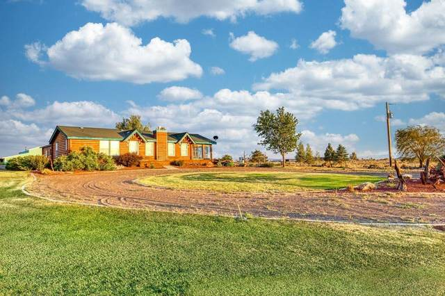 61143 Millican Road, Christmas Valley, OR 97641 (MLS #220127921) :: Premiere Property Group, LLC