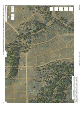 Lot 9 Kleinrock Road, Beatty, OR 97621 (MLS #220127978) :: Arends Realty Group