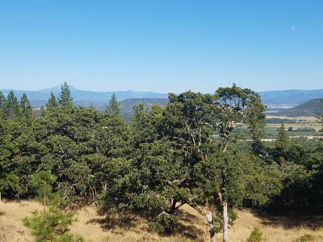 1207 Overlook Drive, Eagle Point, OR 97524 (MLS #220128136) :: Vianet Realty