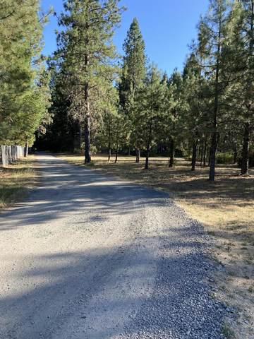 0 Dick George Road, Cave Junction, OR 97523 (MLS #220128189) :: Vianet Realty