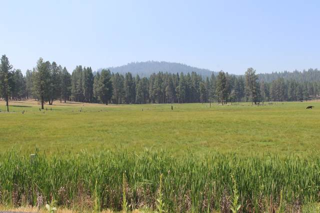 8100 Sprague River Road Road, Chiloquin, OR 97624 (MLS #220128222) :: Coldwell Banker Bain