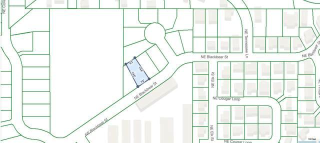 Lot 5 NE Blackbear Street, Prineville, OR 97754 (MLS #220128228) :: The Ladd Group
