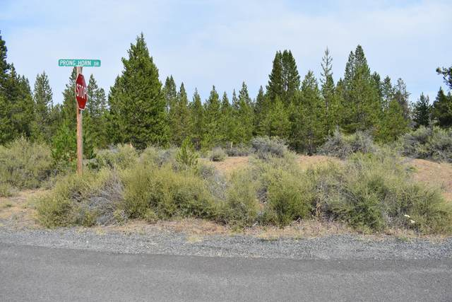 55170 Foster Road, Bend, OR 97707 (MLS #220128231) :: The Ladd Group