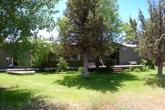 10951 SE Beahm Lane, Prineville, OR 97754 (MLS #220128366) :: Coldwell Banker Bain