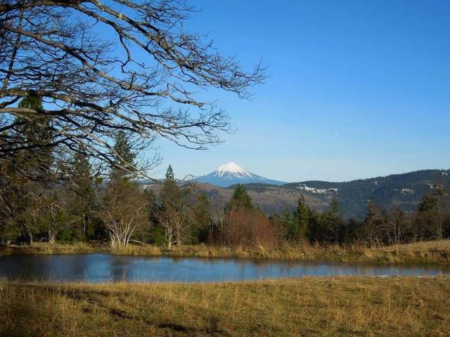 11200 Ashland Climax Road, Eagle Point, OR 97524 (MLS #220128374) :: Vianet Realty
