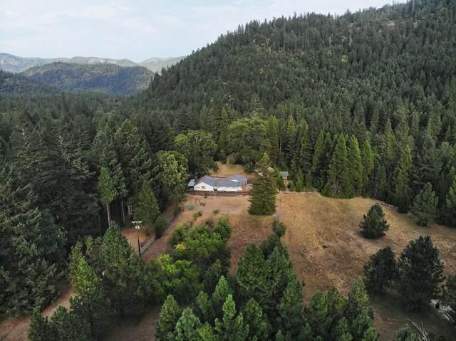1420 Fielder Creek Road, Rogue River, OR 97537 (MLS #220128411) :: Schaake Capital Group